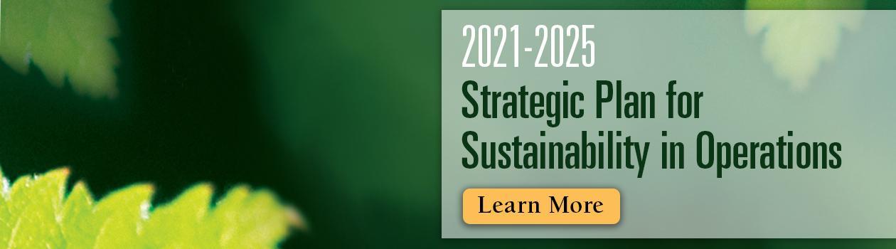 2020 Strategic Plan