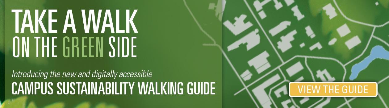 2020 Sustainability Walk